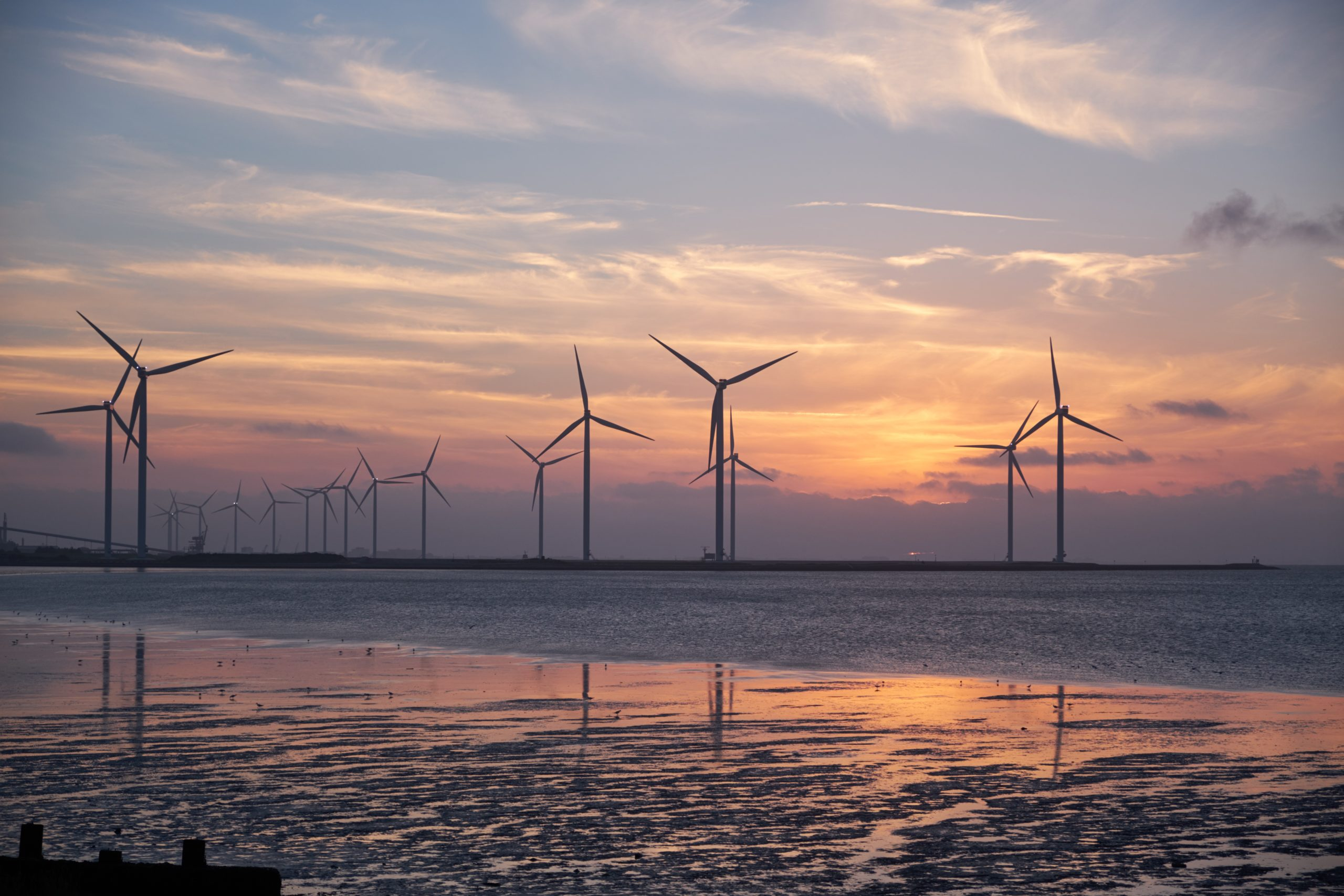 energía renovable Markup